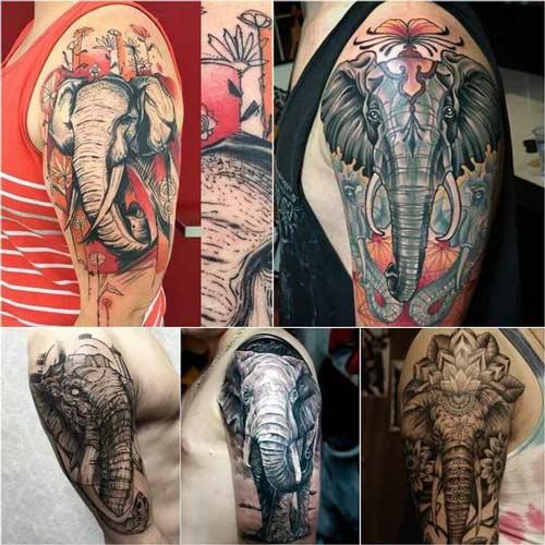hình xăm voi có ý nghĩa gì