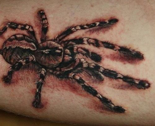mẫu hình xăm nhện