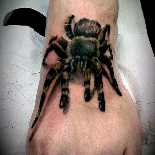 mẫu hình xăm nhện 3d